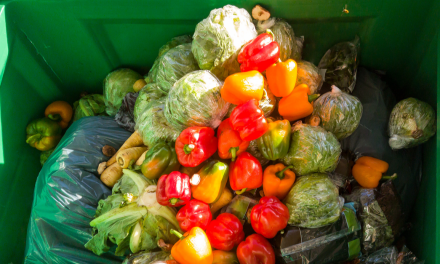 Food Waste and the Need for More Agile and Socially Conscious Food Supply Networks- Part Two