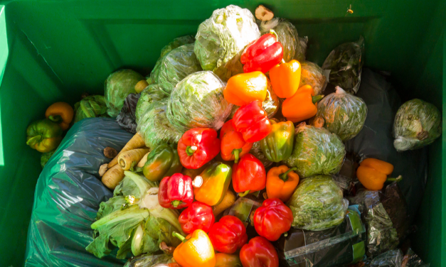 Consumers Have a Role to Play in Reducing Food Waste